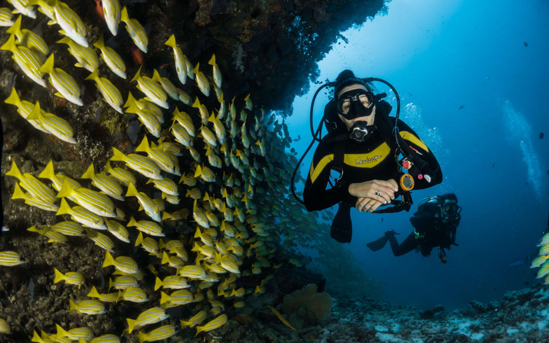 10 Best Trips to Celebrate Our Oceans — Have Fun While Giving Back to the Earth!