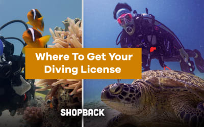 Guess What, You Can Get Your Diving License Right Here in Singapore! Here's How
