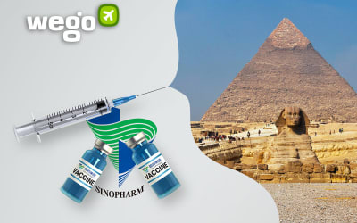 Sinopharm Vaccine in Egypt – Everything You Want to Know About the Vaccine