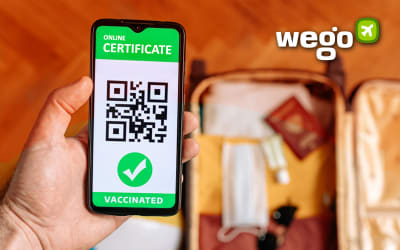 Pakistan Vaccine Certificate: How to Get It and What Can You Do With Your Vaccine Certificate?
