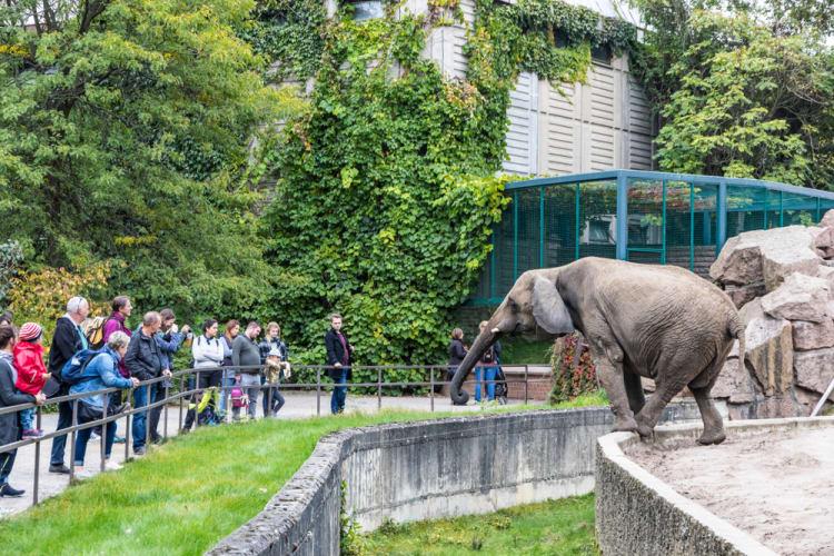 Kid-Friendly_Activities_to_Do_in_Berlin_3_Berlin Zoological Garden