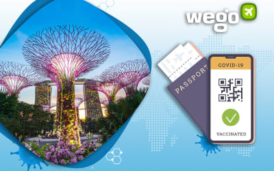 Vaccine Passport Singapore: How the COVID Digital Certification Will Work in Singapore