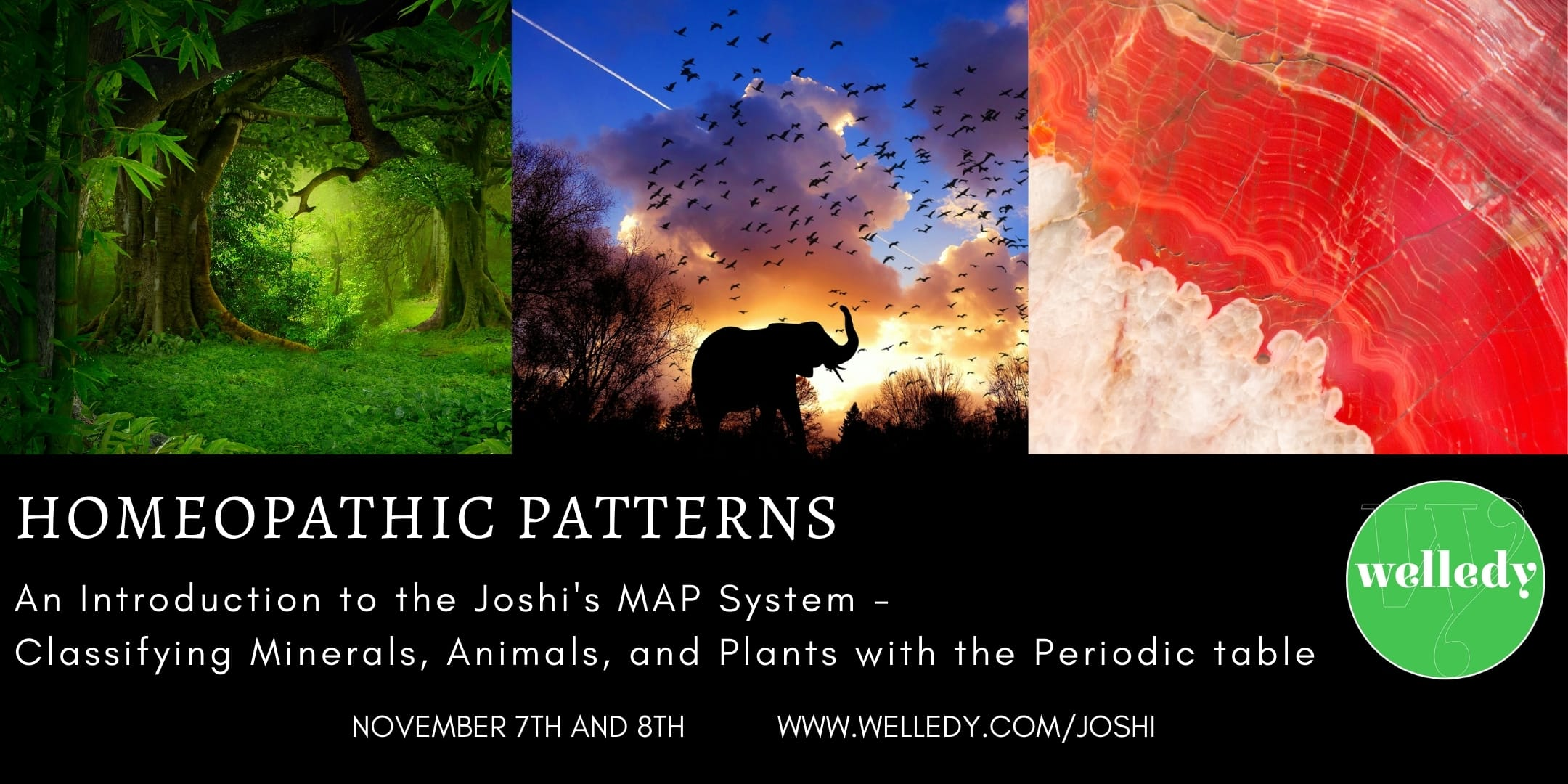 Homeopathic patterns: an introduction to the Joshi MAP system, 7th and 8th November 2020