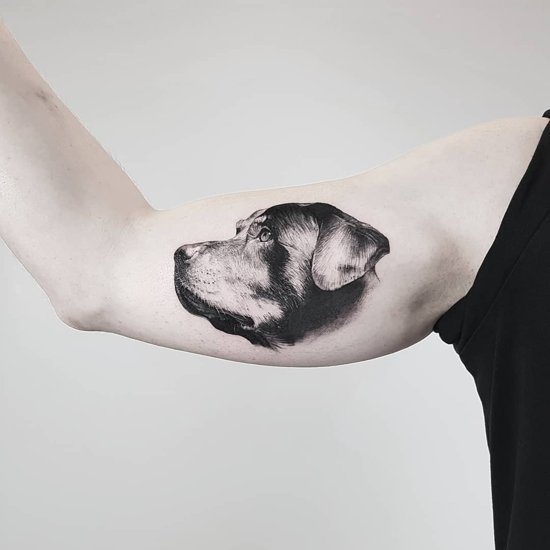 Thommesen Ink Dog Portait Tattoo