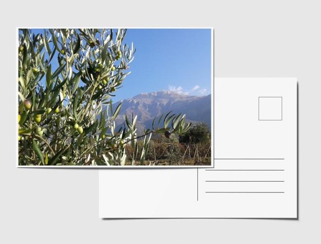 Picture 96552014 220b 4bdd a3fa db4155bd237f