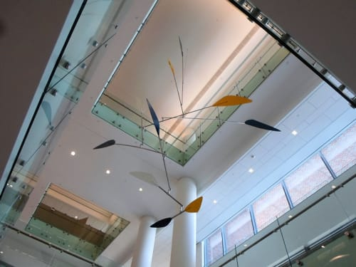 Sculptures by Marco Mahler at Spine Institute At Christ Hospital, Cincinnati - Large Atrium Sculpture
