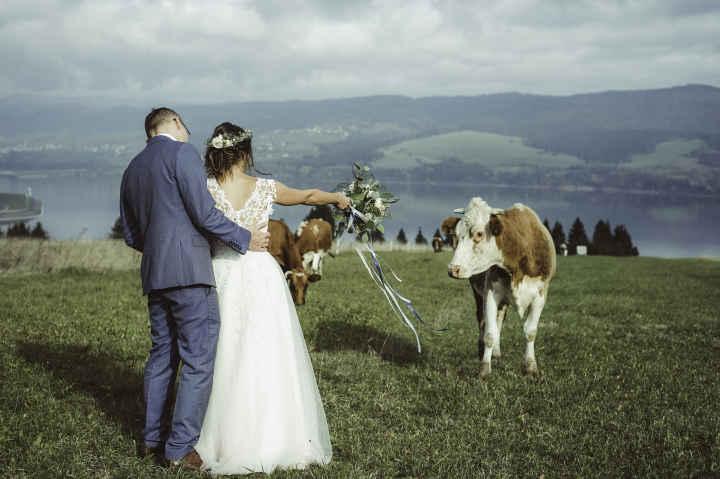 Fotografia ślubna i portretowa