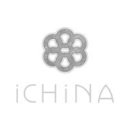 iChina
