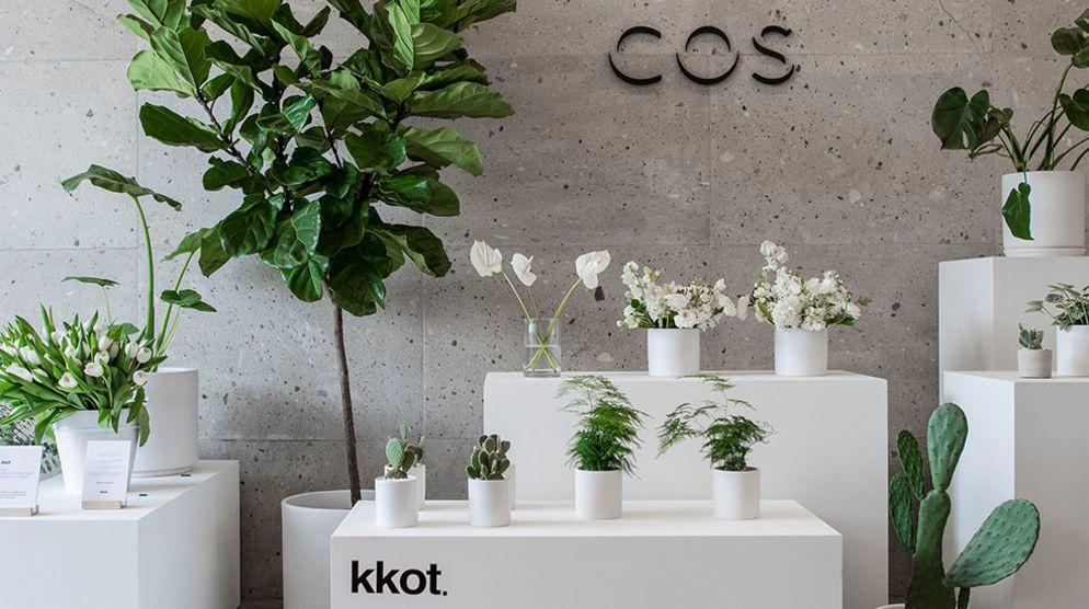 KKOT Floral Pop-Up