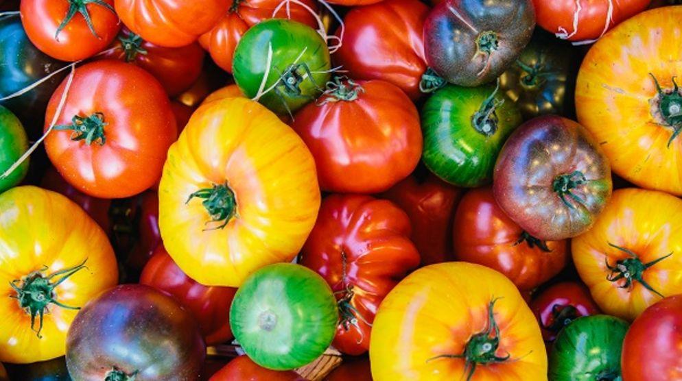 Sherman Oaks Farmers Market