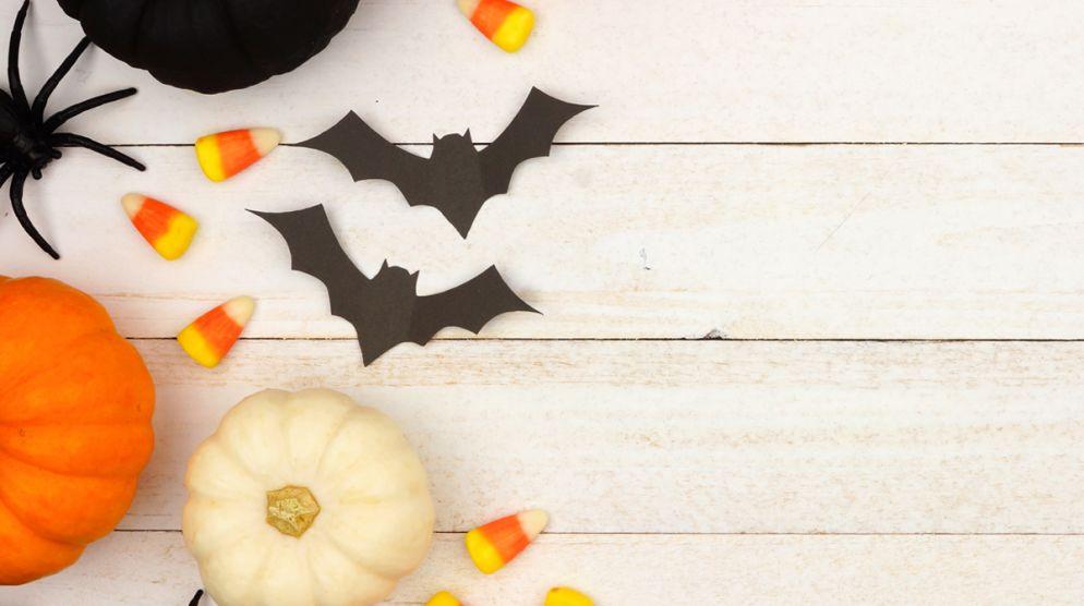 Explore a Spooky Pumpkin Experience