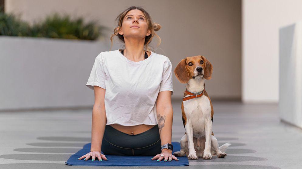 DOGA: Yoga With Your Dog