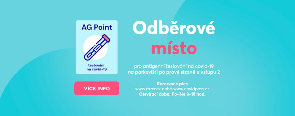 Preventivní antigenní testování na covid-19