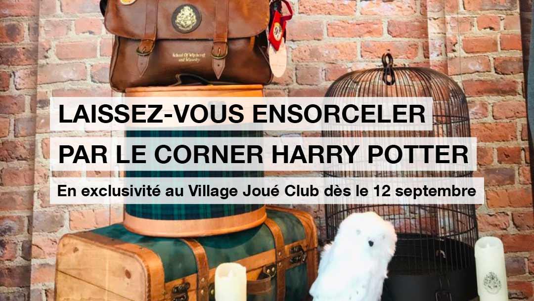 HARRY POTTER S'INVITE AU VILLAGE JOUÉ CLUB !