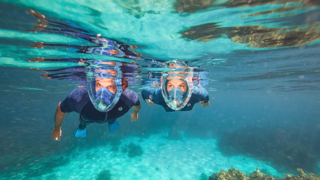 Nouveau Masque de Snorkeling chez Décathlon
