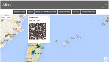 Tea Atlas, a custom plugin tying product locations with Google Maps