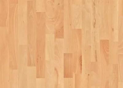 Buy beech Flooring