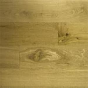 Top View of Oak Wood