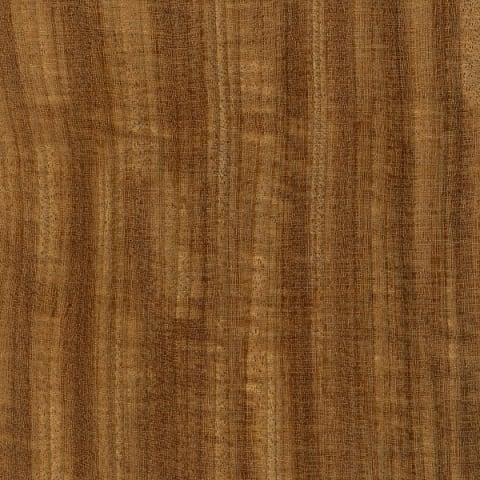 Afrormosia (African Teak) Lacquered Solid Hardwood Flooring