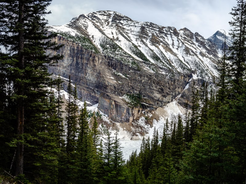 mountains around lake louise framed by trees from the trail to mirror lake