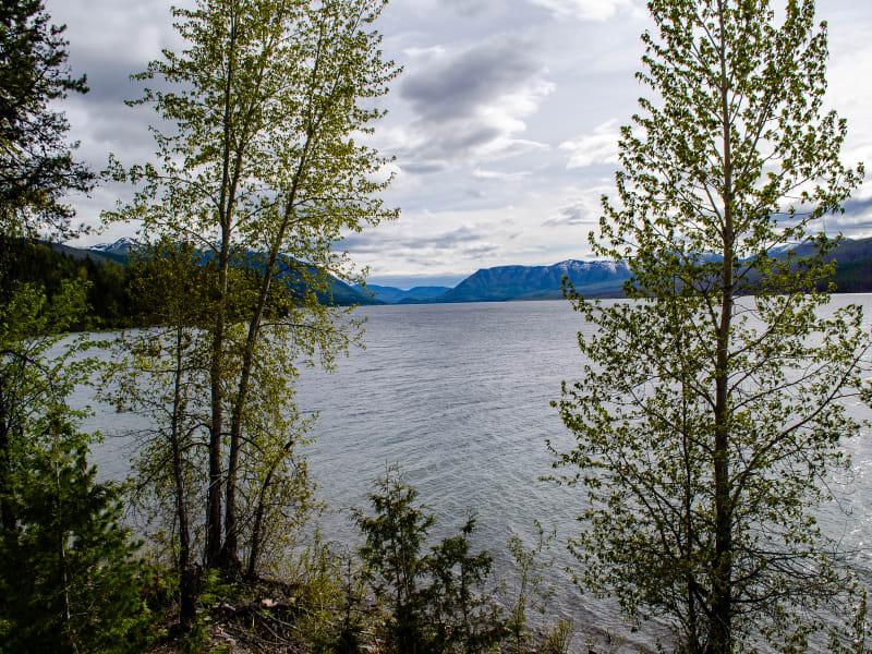 lake mcdonald framed by trees