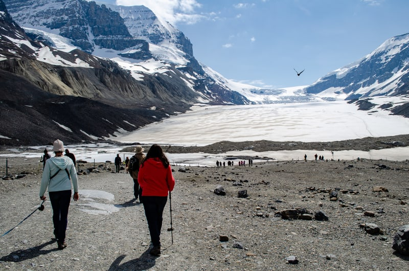 sushila and margot hiking to the toe of the athabasca glacier