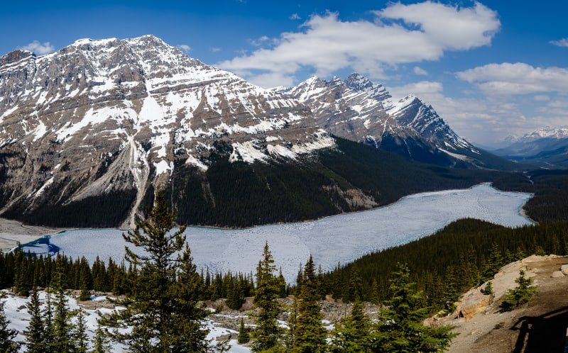 peyto lake covered in ice
