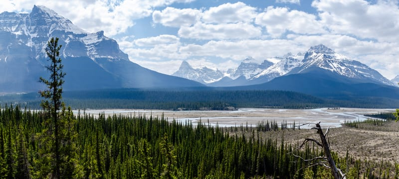 mountain pass overlook along the icefields parkway