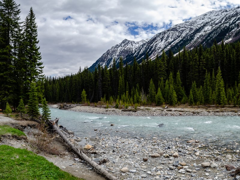 river in kootenay national park with mountains behind