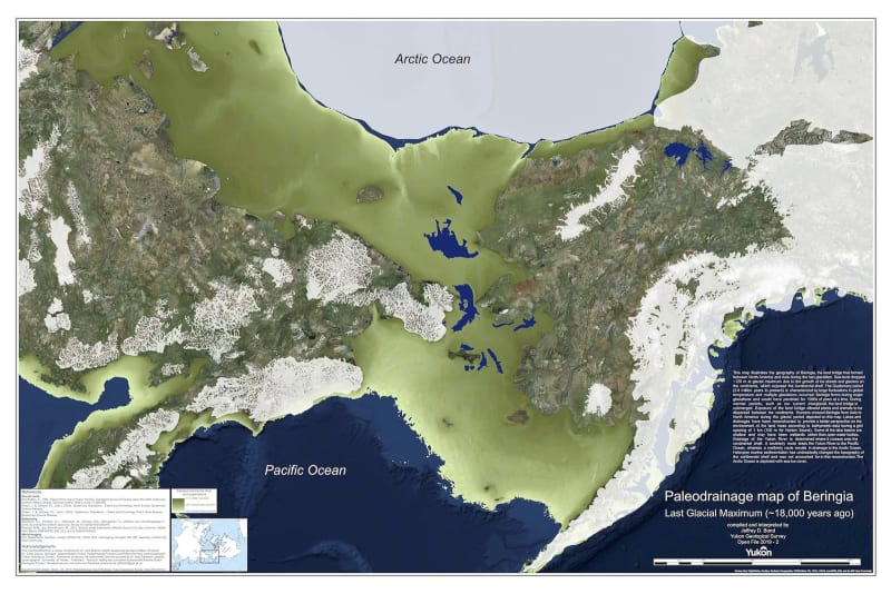 a map of beringia during the last ice age