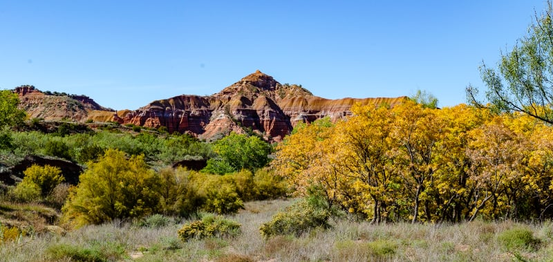a rock formation and colorful trees in the canyon