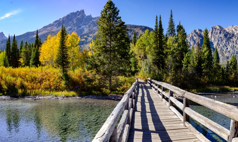 a bridge across some water with colorful trees and the tetons in the distance