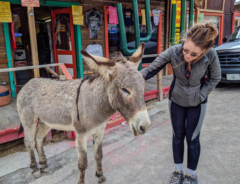 cassie petting a burro