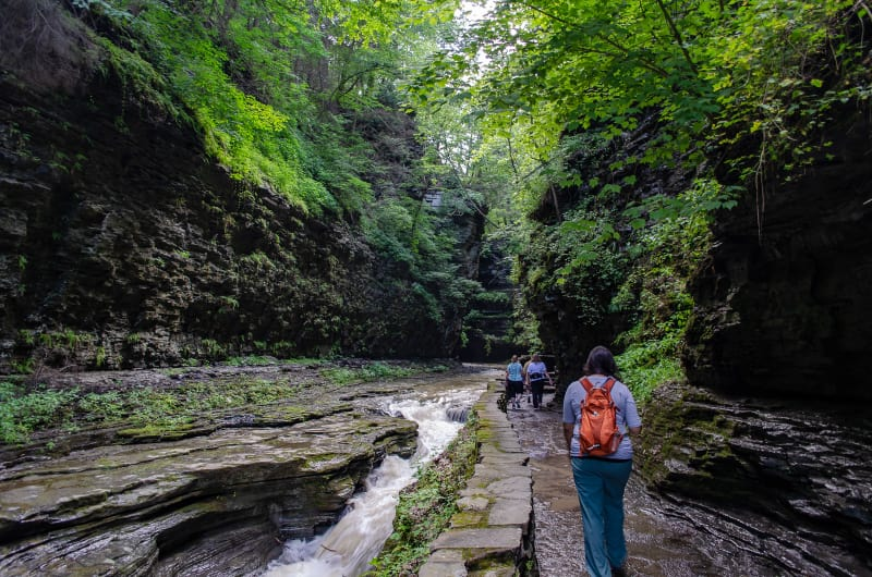 trail through watkins glen gorge