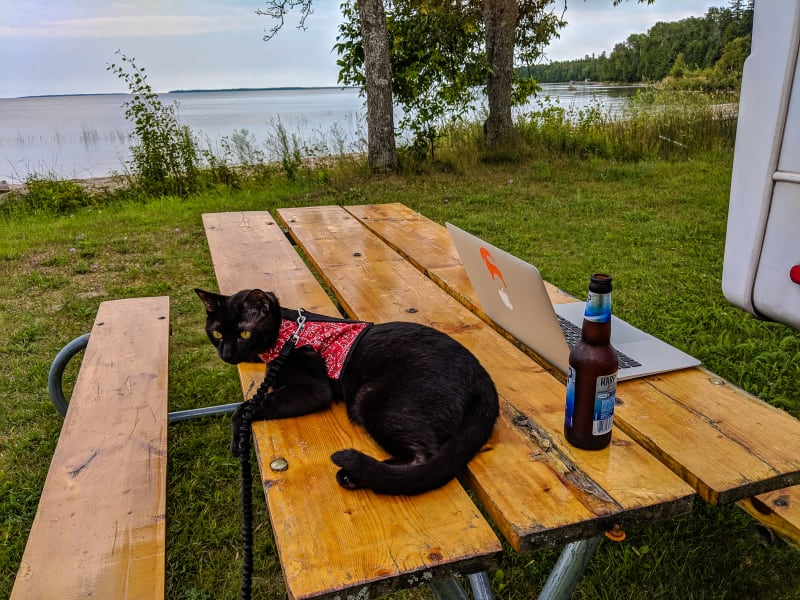 picnic table with laptop, beer, and ollie with the lake in the background