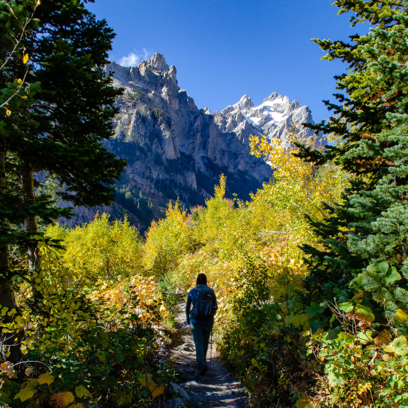 sushila walking into cascade canyon in the teton mountains