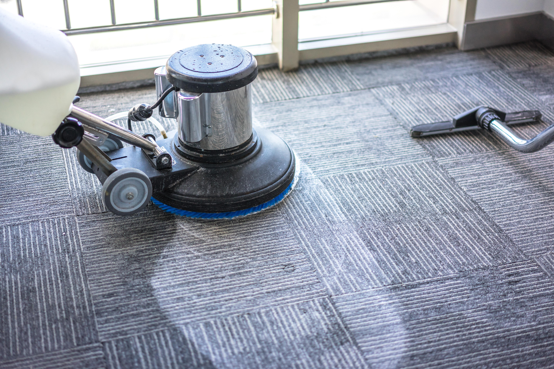 Whavit - Carpet Cleaning