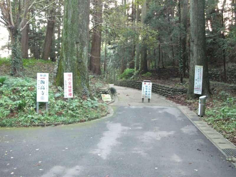 hankouji_temple_6.jpg
