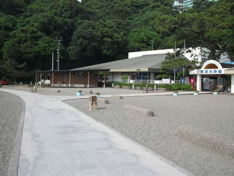 桂浜_3.jpg