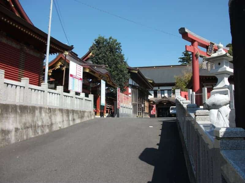 oosugi_shrine_2.jpg