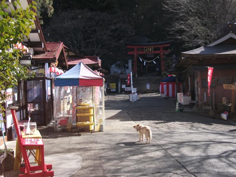 鷲子山上神社_2.jpg