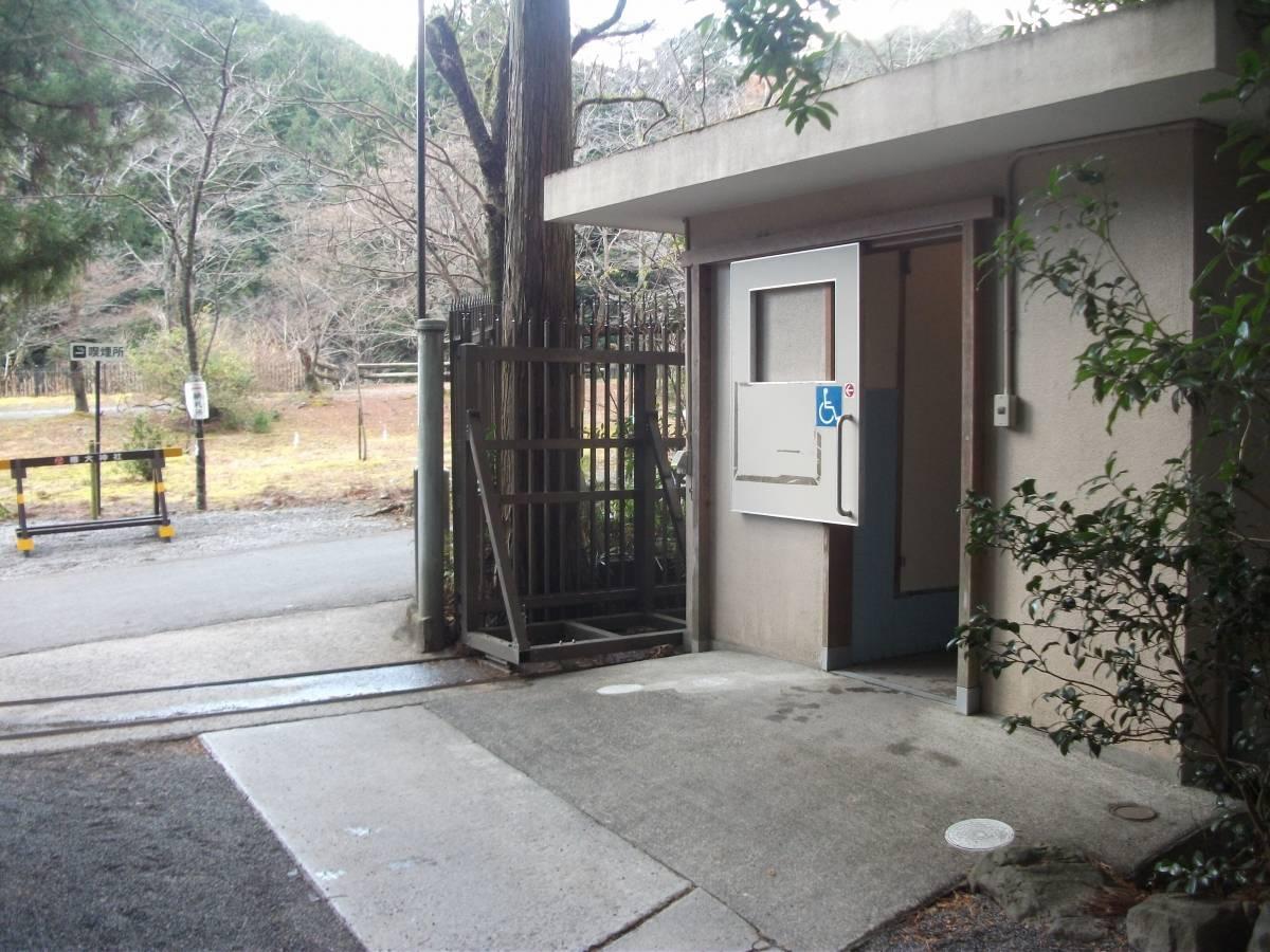 tsubaki_shrine_6.jpg