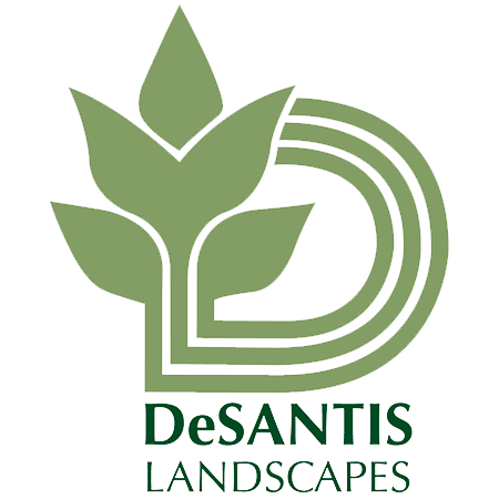 DeSantis Landscapes