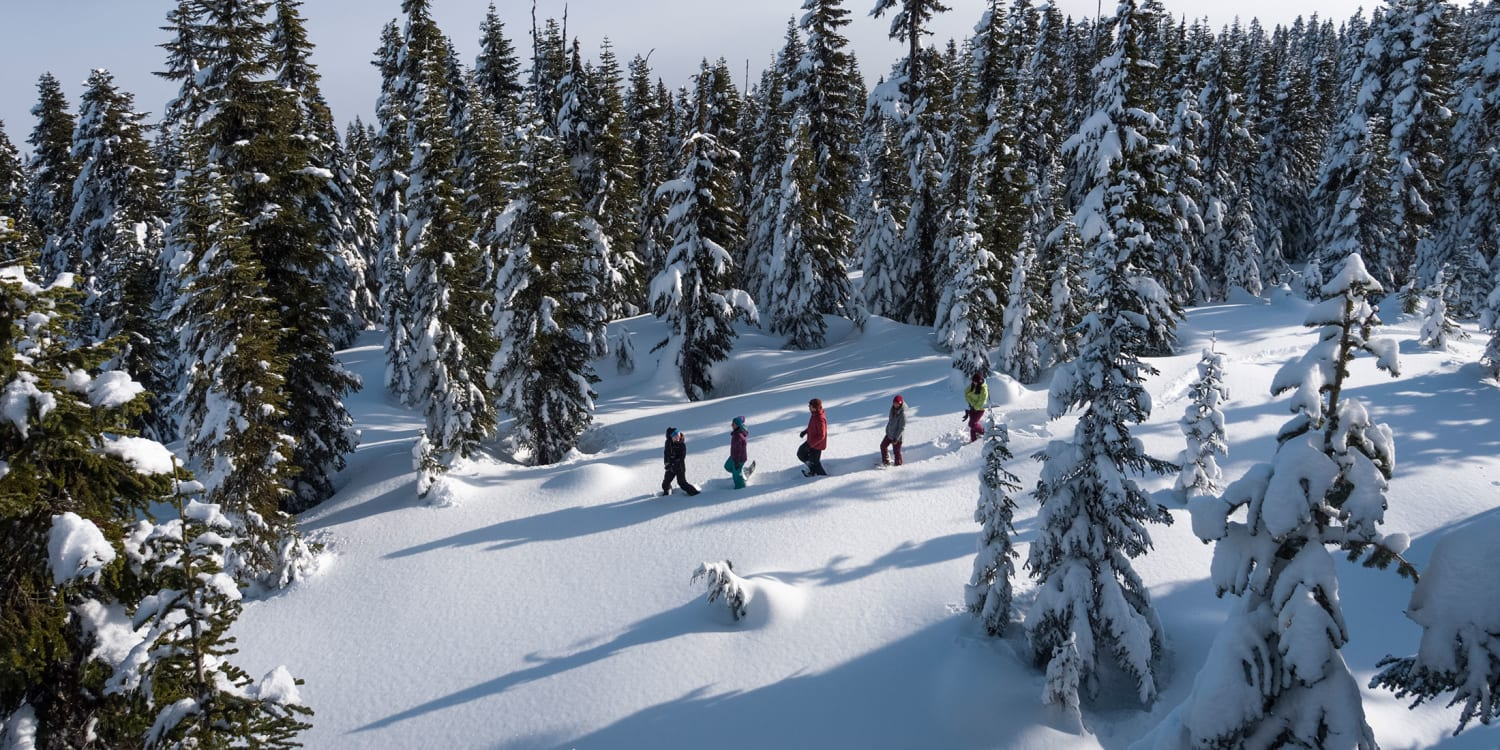 Whistler BC Canada | Skiing and Snowboarding | Tourism Whistler on