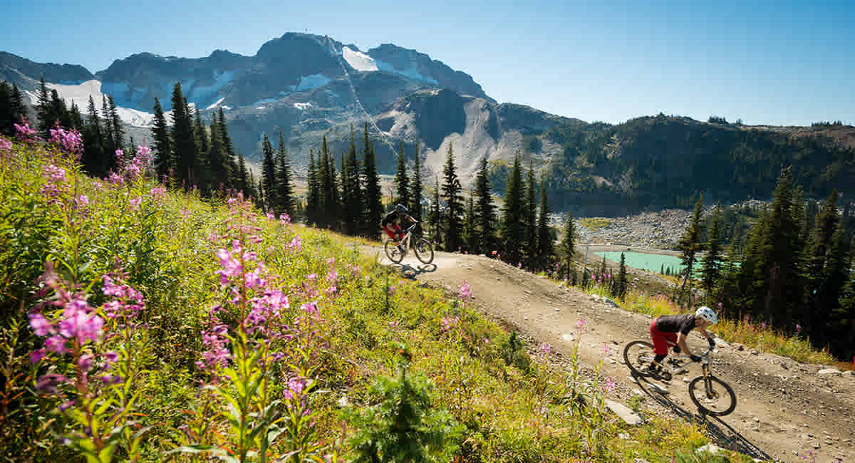 Mountain Bike Packages