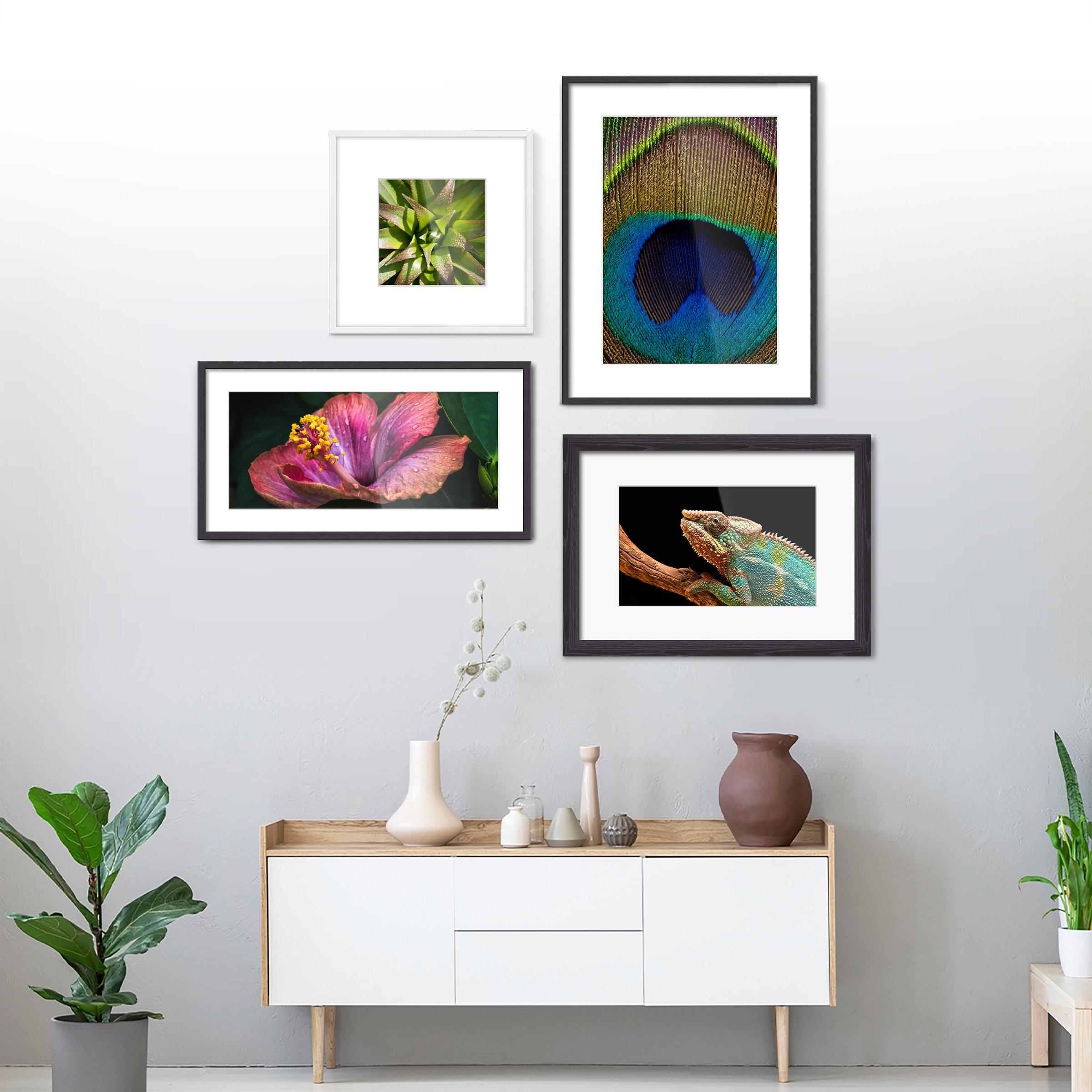 ultra-hd-fotoabzug-tiere-inspiration-1200x1200.jpg
