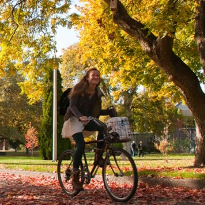 Student biking through campus, fall leaves