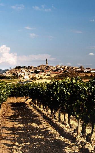Legendäre Rioja