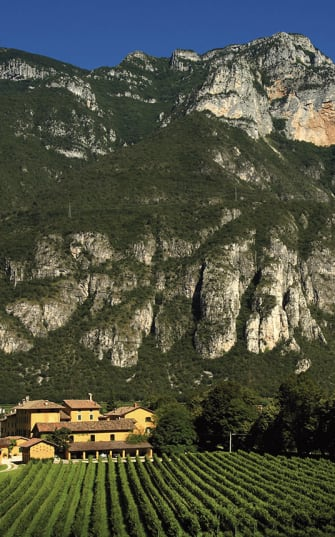 Das Weingut San Leonardo vor einem Gebirge