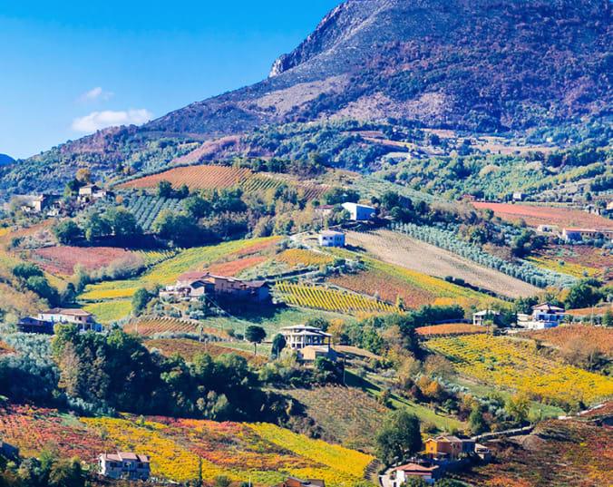Weine aus Süditalien vor geschwungenen Hügeln
